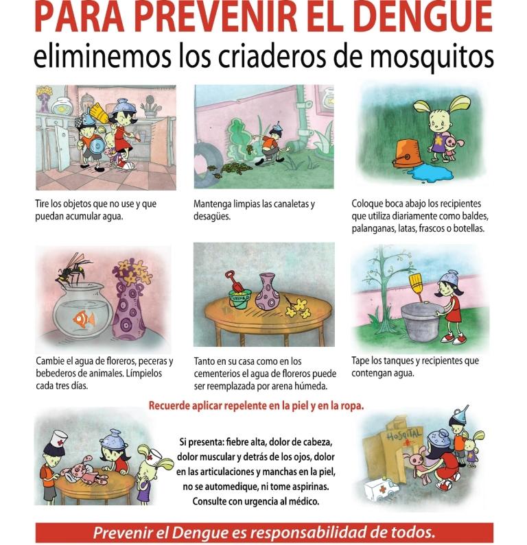 Prevenir El Dengue