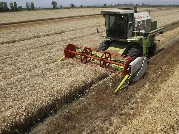 El Gobierno recupera tierras de las Fuerzas Armadas y sembraría soja y trigo